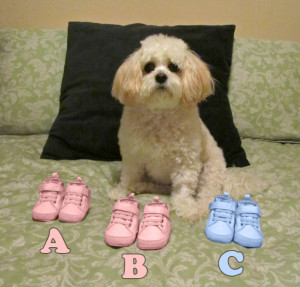 Hope with three pairs of shoes - two girls and a boy!