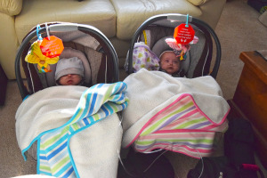 Hazel and Grant in their car carriers.